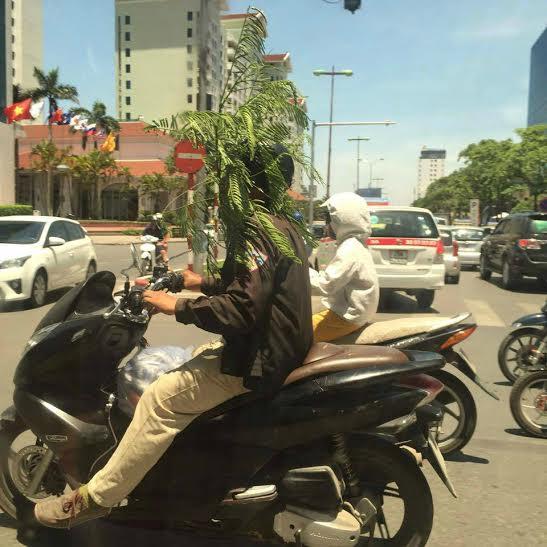 02_estate vietnamita