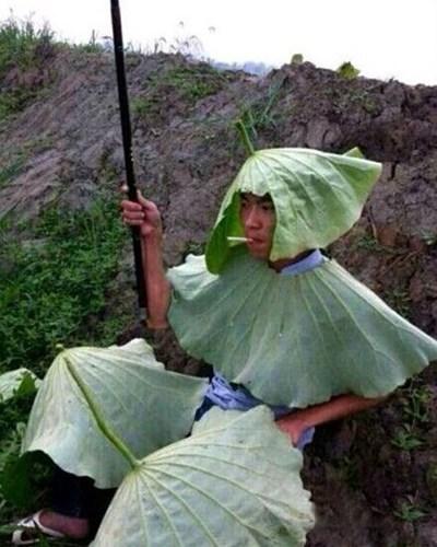 06_estate vietnamita
