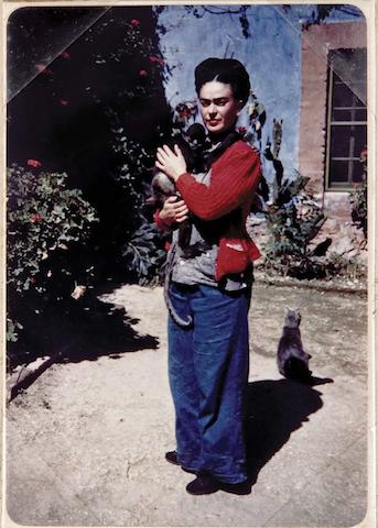 Frida Kahlo con in braccio una scimmietta. Il gatto pare decisamente offeso!