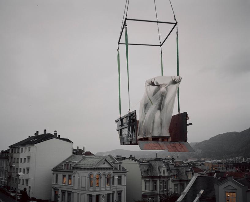 Si spostano gli allestimenti del Museo di Storia Naturale di Bergen