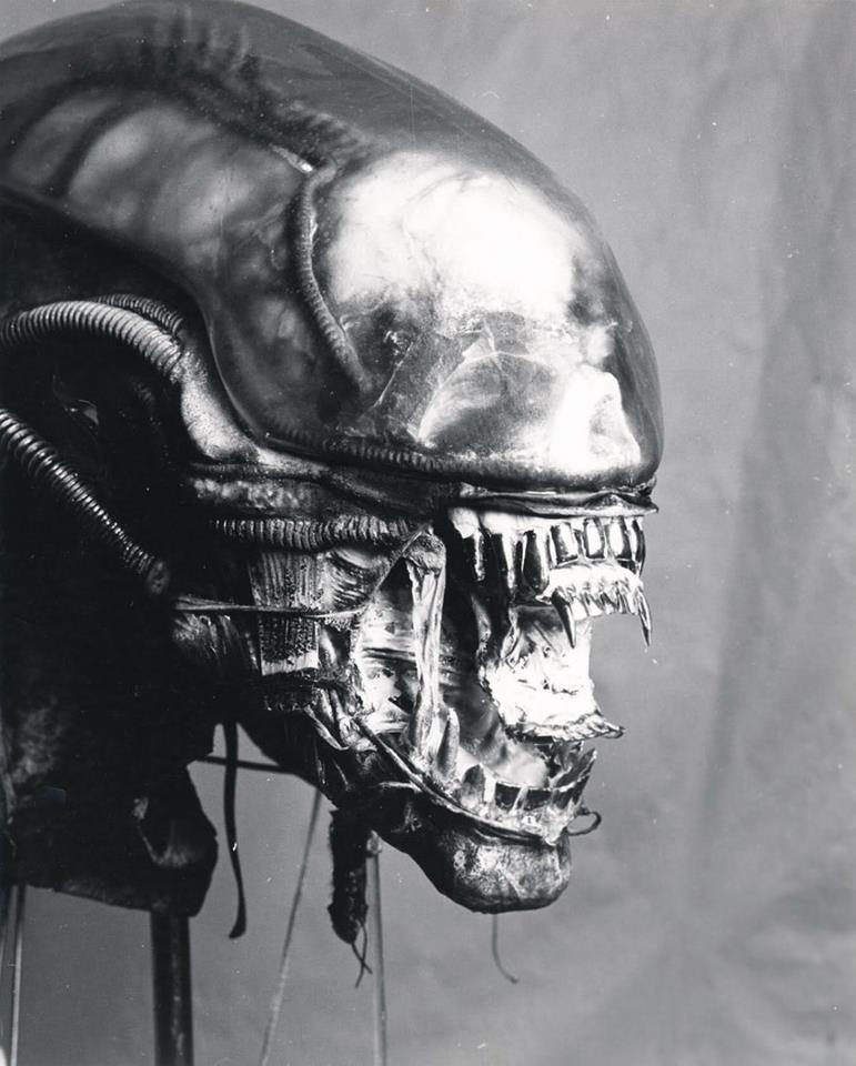 043_alien_ridley scott_sigourney weaver