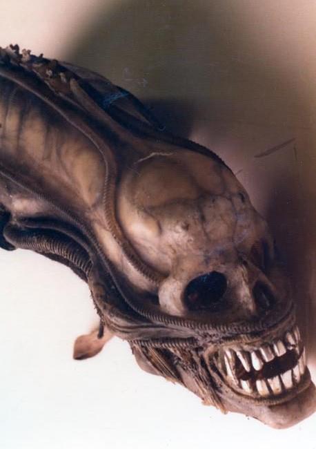 048_alien_ridley scott_sigourney weaver