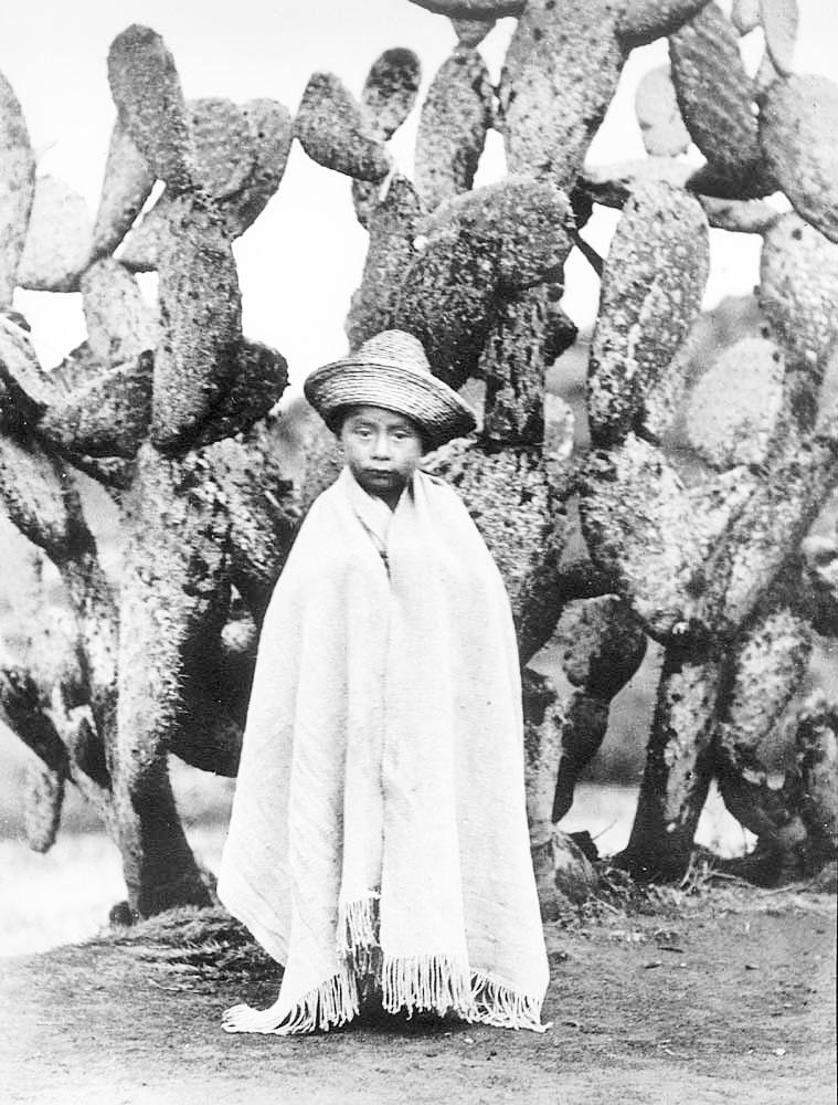 """Tina Modotti, """"Bimbo campesino vicino a un fico d'india"""", 1926 ca."""